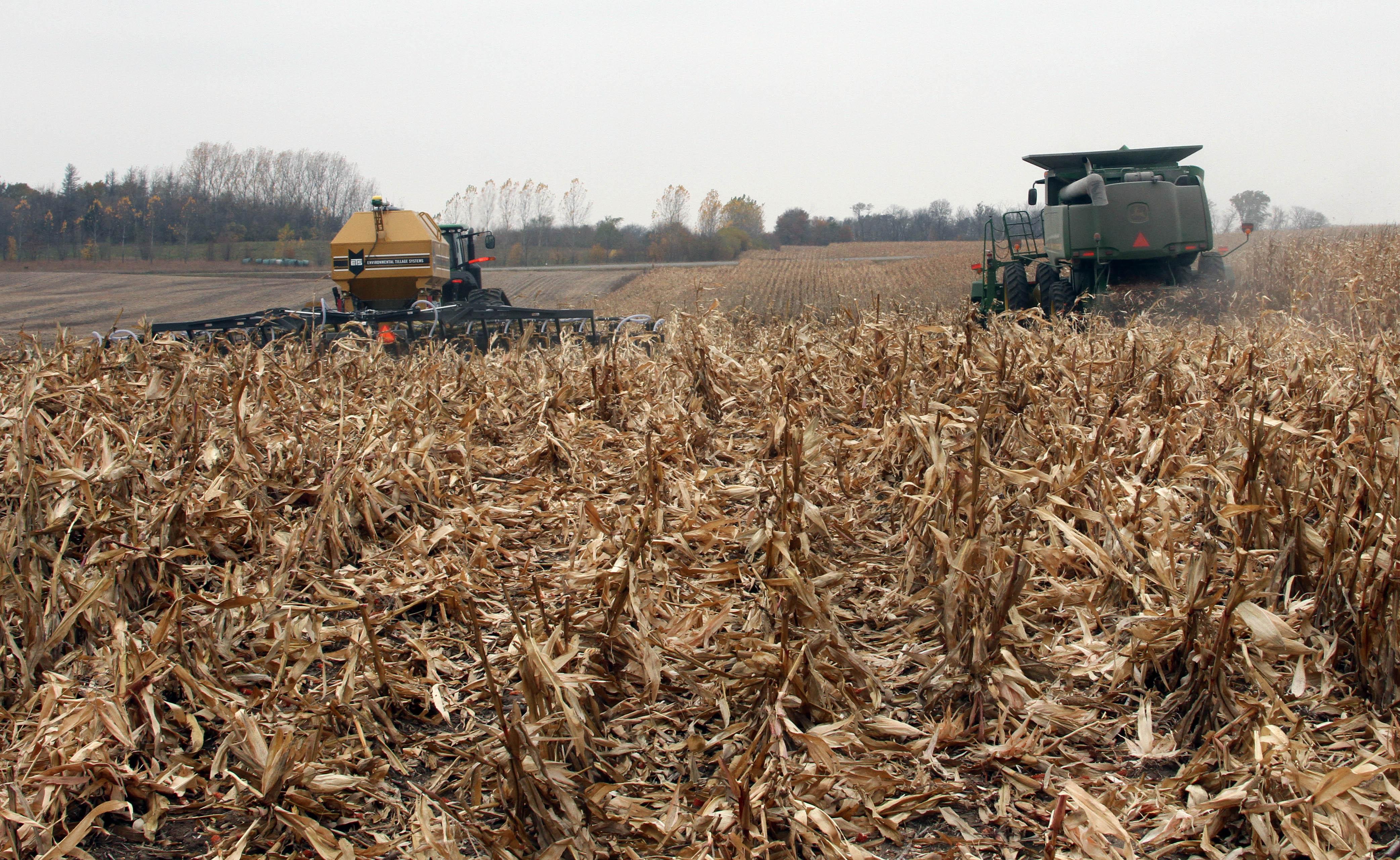 SoilWarrior in corn residue
