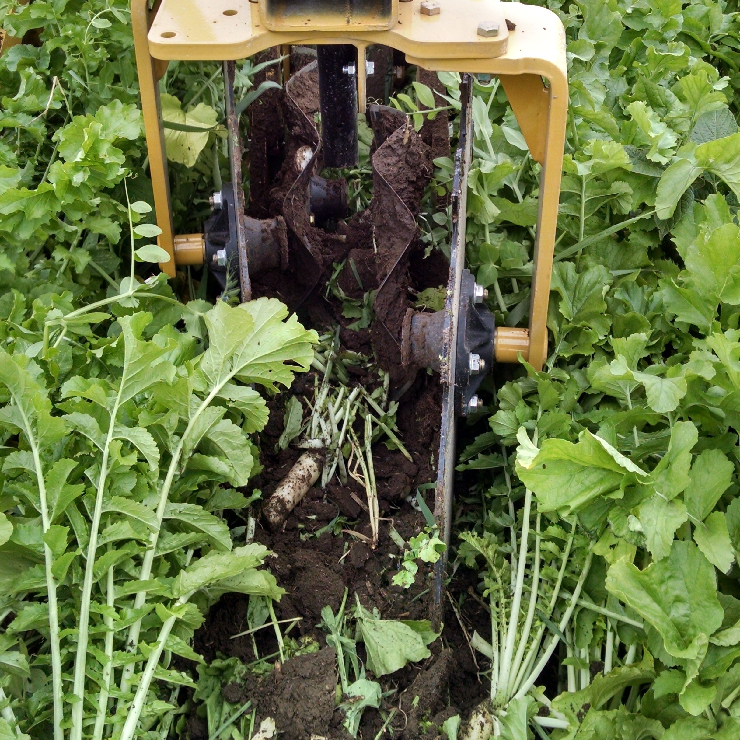 strip-till with SoilWarrior in cover crops