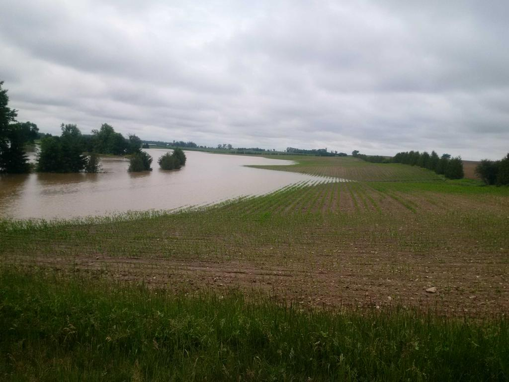 fields after 10 inches of rain at Cantelon farms