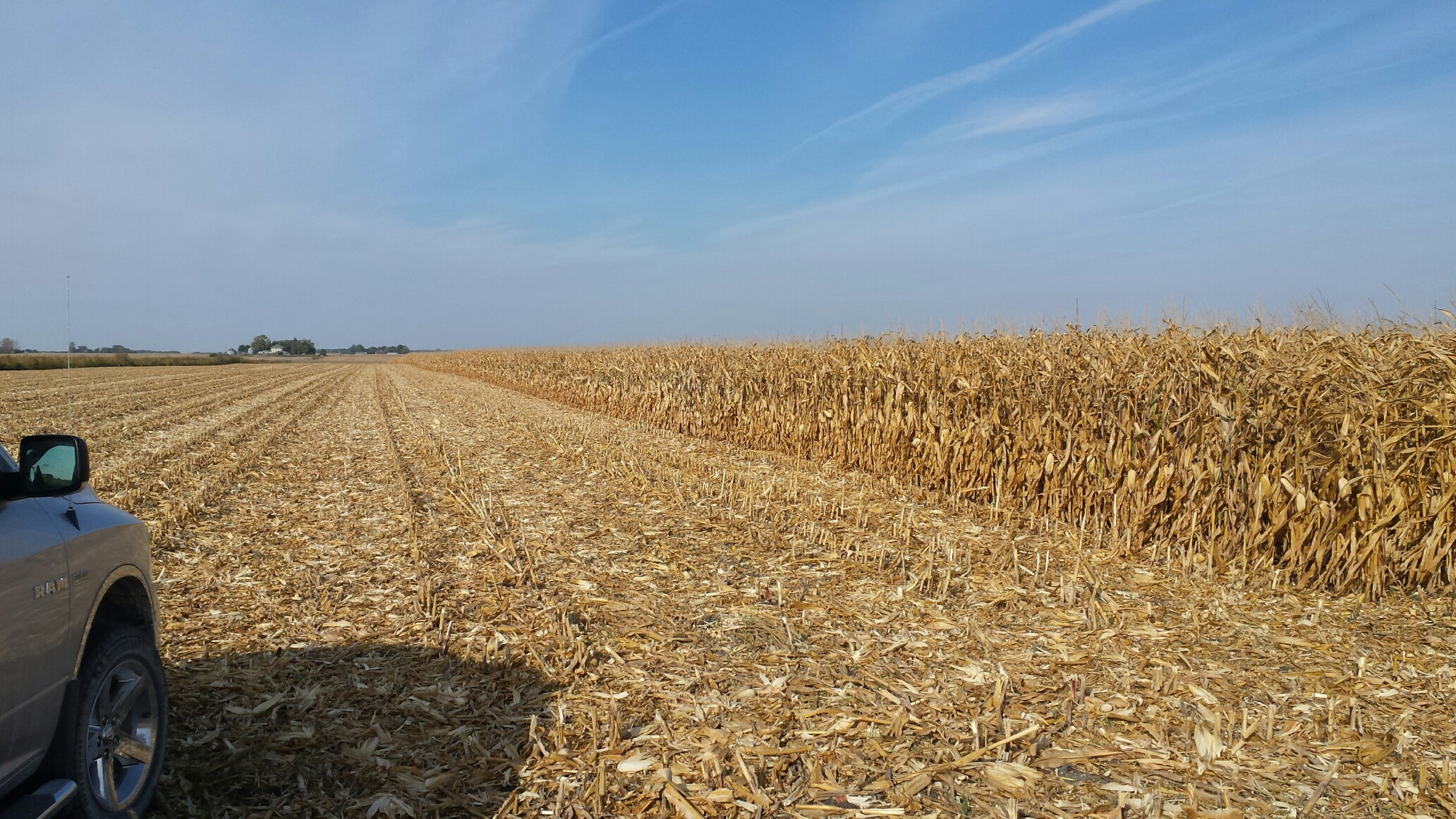 SoilWarrior handles tough corn-on-corn residue
